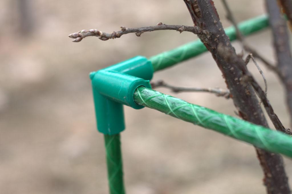Ограды для смородины своими руками